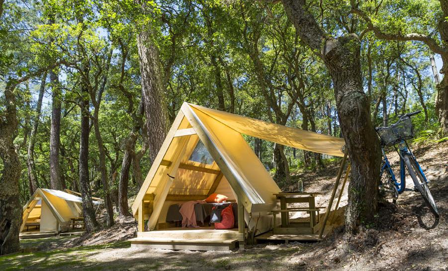 Location bungalow dans les Landes