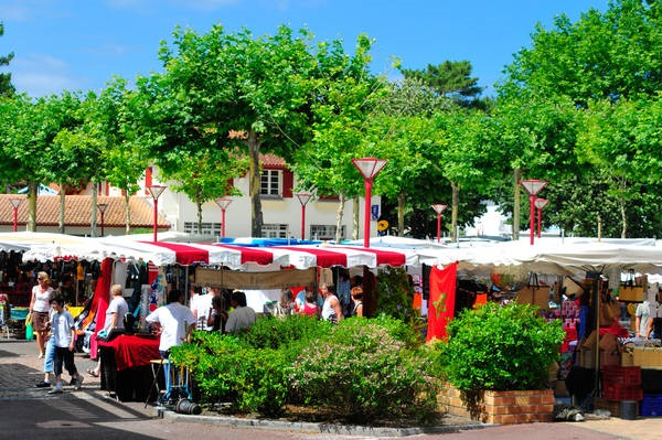 Local markets to visit